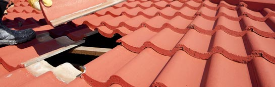 compare Angus roof repair quotes